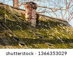 roof with chimney and roof... | Shutterstock . vector #1366353029