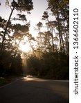 morning road sunbeams | Shutterstock . vector #1366602110