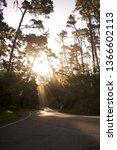 morning road sunbeams | Shutterstock . vector #1366602113