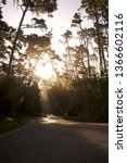 morning road sunbeams | Shutterstock . vector #1366602116