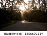 morning road sunbeams | Shutterstock . vector #1366602119