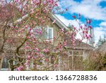 the top of the house or... | Shutterstock . vector #1366728836