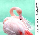 funny  bright pink flamingos in ... | Shutterstock . vector #1366741073
