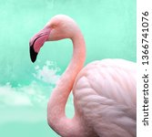 funny  bright pink flamingos in ... | Shutterstock . vector #1366741076