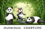 pandas playing in a bamboo... | Shutterstock .eps vector #1366891340