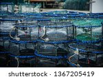 Mesh Nets Fish Trap Consisting...