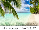 tropical paradise beach with... | Shutterstock . vector #1367274419