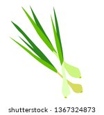 young onions with stems.... | Shutterstock .eps vector #1367324873