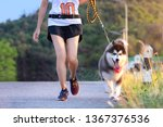Stock photo puppy breed dog and woman doing daily exercise jogging on the public park road together 1367376536
