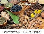 adaptogen food with herbs ...   Shutterstock . vector #1367531486
