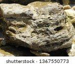 big sea rock on the seashore   Shutterstock . vector #1367550773