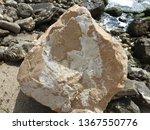big sea rock on the seashore   Shutterstock . vector #1367550776