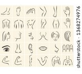 human body parts icons plastic... | Shutterstock .eps vector #1368274976