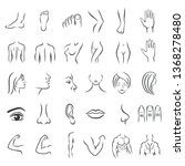 human body parts icons plastic... | Shutterstock .eps vector #1368278480