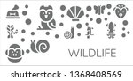 wildlife icon set. 11 filled... | Shutterstock .eps vector #1368408569