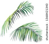 set of tropical palm leaves.... | Shutterstock . vector #1368421340