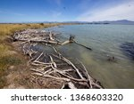 coast of walk of ss waverly... | Shutterstock . vector #1368603320