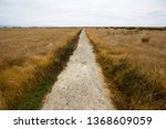 walk of ss waverly near... | Shutterstock . vector #1368609059