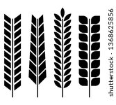 set of various spikelets of... | Shutterstock . vector #1368625856