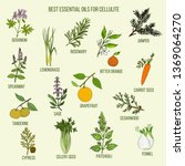 best essential oils for... | Shutterstock .eps vector #1369064270
