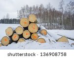 logs in the snow | Shutterstock . vector #136908758