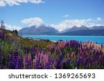 beautiful new zealand scenery... | Shutterstock . vector #1369265693