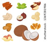 nuts flat set. food organic.... | Shutterstock .eps vector #1369281986