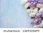 purple and white terry lilac...   Shutterstock . vector #1369310699