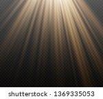 sunlight a translucent special... | Shutterstock .eps vector #1369335053