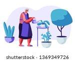 senior woman gardening hobby.... | Shutterstock .eps vector #1369349726