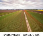 aerial view of the colorful... | Shutterstock . vector #1369372436