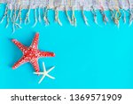 starfishes on blue background... | Shutterstock . vector #1369571909