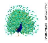 peacocks beauty exotic birds... | Shutterstock .eps vector #1369633940