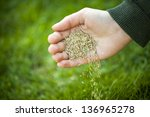Hand Planting Grass Seed For...