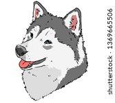 smiling husky realistic   Shutterstock .eps vector #1369665506