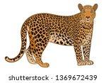 leopard or jaguar. predator's... | Shutterstock .eps vector #1369672439