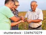 group of farmers standing in a... | Shutterstock . vector #1369673279