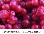 schisandra chinensis background | Shutterstock . vector #1369675850