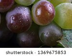 grape background. macro | Shutterstock . vector #1369675853