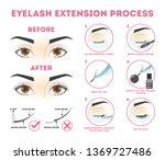 eyelash extension guide for...   Shutterstock .eps vector #1369727486