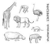 vector set of hand drawings... | Shutterstock .eps vector #1369852496