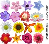 set of flower heads isolated on ... | Shutterstock . vector #136994084