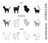 vector design of breeding and... | Shutterstock .eps vector #1370011196