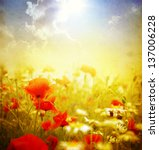 photo of a poppies pasted on a... | Shutterstock . vector #137006228