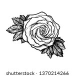 beautiful hand drawn rose... | Shutterstock .eps vector #1370214266