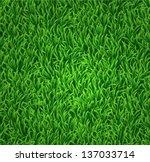 green grass background | Shutterstock . vector #137033714