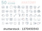 set of vector line icons of... | Shutterstock .eps vector #1370450543