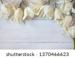 wooden white background with...   Shutterstock . vector #1370466623