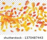 oak  maple  wild ash rowan... | Shutterstock .eps vector #1370487443