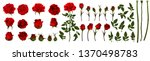 beautiful bouquet with red... | Shutterstock .eps vector #1370498783